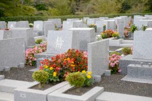 墓石 移動