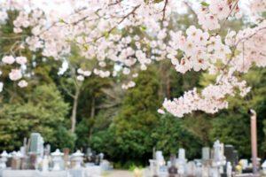墓地 決める タイミング