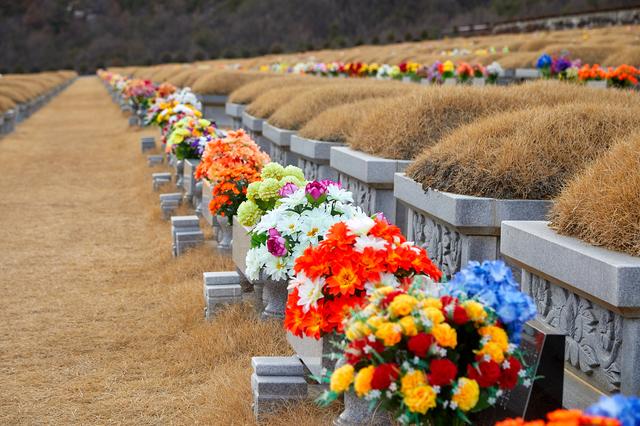 共同墓地の意味と特徴