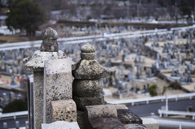 墓地の種類