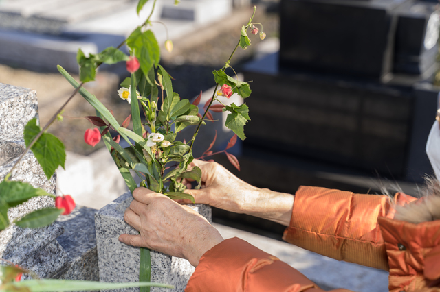 お墓に供える花の種類